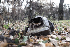 Concrete & Iron (Gtantha) Tags: torn shatter laub iron