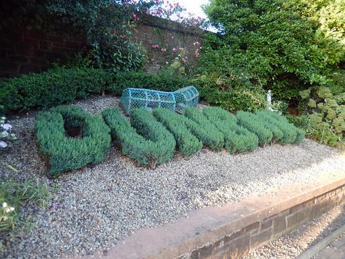 Dunbar spelt in tree cuttings