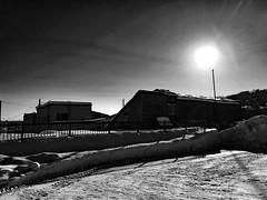 Shadows on the Snow in a Parking Lot 2 (sjrankin) Tags: 21january2017 edited yubari hokkaido japan grayscale shimizusawa sun shadows parkinglot buildings