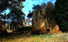 Una de ruinas.... (Garciamartín) Tags: rustico rural ruinas desolación abandono monasterio monumento otoño moreruela zamora granjademoreruela castillaleón españa europa garciamartín nino naturaleza