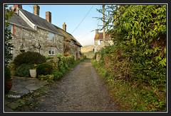 31.12.16 Sutton Poyntz mist.. (Tadie88) Tags: suttonpoyntzprestonweymouthdorset fields views mist cottages lunaphotos