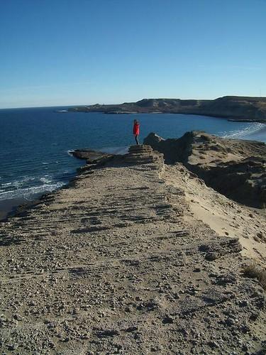 Estratos con coquinas de la formación Madryn (Mioceno) en Puerto Pirámides