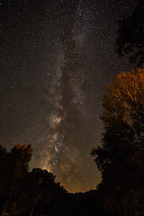 Milky Way (Alpha6000-User) Tags: milchstrase