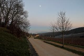 Departure in the moonlight