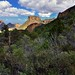 Mountain Peaks and Hillsides of Trees All Around (Big Bend National Park)