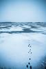 Schwedischer Winter (DerWalli) Tags: schnee wald winter see eis wasser fluss nebel schweden sweden ice water sea wood snow svenska hase hasenspuren spuren tierspuren blau weiss blue white traces melancholy