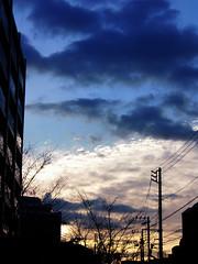#1218 morning sky