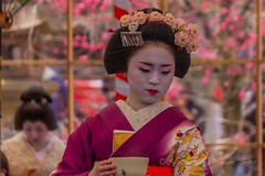 Tea ceremony at the Kitano Tenman-gū Shrine (北野天満宮) in Kyoto! (KyotoDreamTrips) Tags: japan kitanotenmangū kyoto plumblossomfestival shinto sugawaranomichizane teaceremony 北野天満宮 梅花祭 菅原道真 野点大茶湯