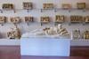 DSCF0652.jpg (Darren and Brad) Tags: etruschi fatguy italy etruscan nationalarchaeologicalmuseum firenze palazzodellacrocetta museoarcheologiconazionale sarcophagus italia florence