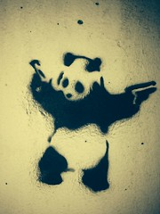 Panda - Stencil, seen in Maribor/Slovenia ( Philipp Hamedl) Tags: street city streetart art stencil panda kunst spray slovenia stadt slowenien marburg maribor schablone sprhschablone sprhen strasenkunst sprhschablonen