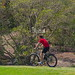 """sydney-rides-festival-ebike-demo-day-050 • <a style=""""font-size:0.8em;"""" href=""""http://www.flickr.com/photos/97921711@N04/22170086061/"""" target=""""_blank"""">View on Flickr</a>"""
