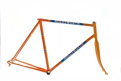 Holdsworth Professional Frame Respray