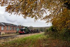 Autumn at Whitecroft (Articdriver) Tags: autumn heritage woodland factory transport railway trains goods steam locomotive forestofdean gwr greatwestern 5541 whitecroft deanforestrailway