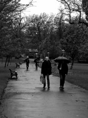 """""""I don't care if we are mates, you ain't sharing my brolly!"""" (Draopsnai) Tags: park blackandwhite bw monochrome rain strangers grayscale umbrellas"""