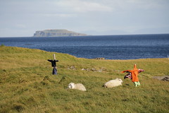 (Camusi) Tags: ocean blue mer green field island iceland sheep scarecrow ile september moutons champ islande epouvantail westiceland islandedelouest