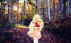 Little princess lost in the woods ( Lily Queens ) Tags: doll dreaming emeraude ccs petworks ruruko