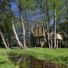 Cabañitas del Bosque 14