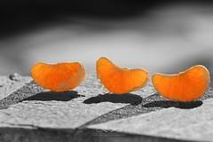 JSC_7025 (Kostas Kalomiris) Tags: orange fruits blackwhite lemon juice mandarin citrus citrusfruit citrustrees