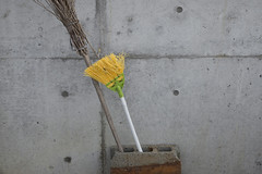 The yellow broom which seemed to be a flower / JAPAN (mokuu) Tags: broom 箒 yellow 黄色 wall 壁