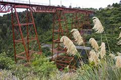 Makatote viaduct (swanny11) Tags: railway bridge viaduct canon450d newzealand red