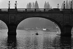 Row (sjnewton) Tags: nikon d600 28300mmf3556gvr kingstonuponthames surrey england uk 2017 row river thames rower water bridge