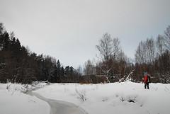 Тишина, серое небо и белый снег. Поворачиваем обратно.