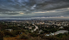 • Late Day L.A. • (Wilkof Photography) Tags: hollywoodbowloverlook hollywood hollywoodbowl losangeles california urban city citscape afternoon architecture canon countryside cloudy colorful clouds downtown dark evening foliage landscape light land 18135mm 18mm lens leaves lights mountains hill hillside fog foggy nature overcast outside overgrown perspective panoramic picturesque rural rustic rain raincloud green shadow scenic sky skyline sunset serene sundown symmetry sunlit trees wet windy winter