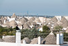 IMG_7146 (jaglazier) Tags: 2016 73116 alberobello apulia architecture buildings cityscapes coniferoustrees conifers construction copyright2016jamesaglazier cranes deciduoustrees domes hills houses italy july landscape plants roofs stackedstone trees trulli urbanism vaults bushes cities gardens landscapes panorama stonebuildings unescoworldheritagesites whitewash puglia