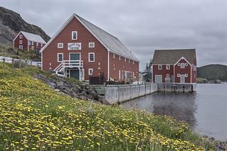 Salt box houses