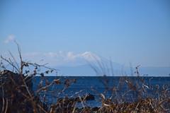 20170105_019_2 (まさちゃん) Tags: 富士山 城ヶ島 海 つd