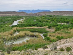 Big Bend National Park (Jasperdo) Tags: bigbendnationalpark bigbend nationalpark nationalparkservice nps texas riograndevillagenaturetrail landscape scenery riogranderiver river riograndevillagecampground campground