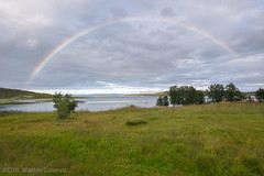 [explored] Full rainbow (Matteo Liberati) Tags: noruega norvegia norway laponia lapponia lapland summer estate verano nature naturaleza natura día giorno day landscape paesaggio paisaje view scenery panorama alberi arboles trees verde green sky cielo contrasts contrasti contrastes light luce luz wild clouds nuvole nubes color colour colore scandinavia rainbow arcobaleno arcoiris sea mare mar finmark indrebillefjord ytrebillefjord explore explored flickrexplored