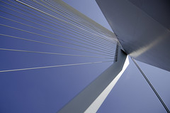 Erasmus 2 (Explored) (Stonebridge65) Tags: bridge abstract detail netherlands architecture rotterdam nikon erasmus nederland brug tamron architectuur erasmusbrug top20bridges d5100