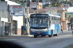 IMG_5270 (GojiMet86) Tags: transurbano ciudad de guatemala city camioneta bus buses caio apache vip 792 u256bbf