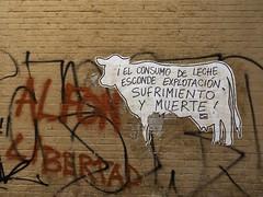 La Vaca (Fe Ro) Tags: pared libertad graffiti vaca arteurbano