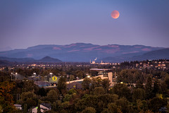 Autzen Omen (Stacy Brantley Photo) Tags: moon oregon eclipse ducks full eugene lunar bloodmoon autzen
