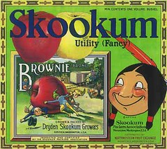"Skookum Brownie • <a style=""font-size:0.8em;"" href=""http://www.flickr.com/photos/136320455@N08/21284831699/"" target=""_blank"">View on Flickr</a>"