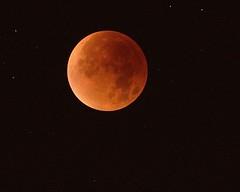 sud_3097 (sud u) Tags: eclipse harvest lunar supermoon
