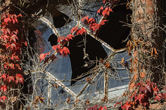 Beelitz-Heilsttten Oktober 2015 (Project-X-Team) Tags: deutschland iso200 decay urbanexploration f71 brandenburg urbex verfall beelitzheilsttten 140mm beelitz canoneos350ddigital projectxteam