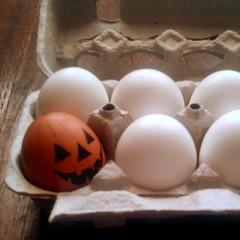 Halloween eggcitement (maralina!) Tags: halloween jackolantern trickortreat egg oeuf oddmanout eggciting spotthedifference eggcellent