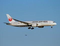 Japan Air Lines                                  Boeing 787 Dreamliner                                  JA823J (Flame1958) Tags: boston atc loganairport bos jal bostonloganairport airtraffic japanairlines 1015 787 b787 2015 bostonlogan dreamliner kbos 191015 b787dreamliner jalb767 ja823j