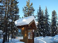 Moraine Lake Road Cross Country Ski - They've had a bit of snow - Yeah! (benlarhome) Tags: winter snow canada ice rockies nationalpark path crosscountry trail alberta rockymountain banff lakelouise moraine kanada morainelake crosscountryski schi
