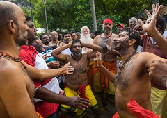 A Devotee Cheek Is Pierced With A Skewer By A Priest At Thaipusam Hindu Festival At Batu Caves, Southeast Asia, Kuala Lumpur, Malaysia (Eric Lafforgue) Tags: shirtless pierced people men tourism public festival horizontal mouth festive religious outdoors photography pain asia southeastasia day cheek indian faith religion ceremony piercing parade celebration event malaysia devotion pierce ritual priest kualalumpur spirituality tradition devotee endurance hindu hinduism malaysian groupofpeople cultures pilgrimage batu skewer thaipusam hindi pilgrim selangor decorated placeofworship penance traveldestinations humanmouth humanbodypart kl322