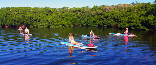 11_30_15 Paddleboard Yoga in Lido Mangroves FL 11