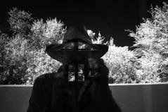 clarification (johngpt) Tags: reflection window self infraredfilter hww windowwednesday fujifilmfinepixx100 zomeiir720filter abqbotanicgardens wclwideconversionlens desertrosegarden
