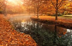 Fuentes del Marqus (Antonio Carrillo (Ancalop)) Tags: autumn espaa sunshine rio canon river spain murcia amanecer otoo 1740mm caravaca caravacadelacruz canon1740mmf4 antoniocarrillo canon5dmarkii ancalop