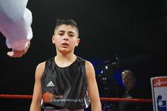 DSC05417 (Mustafa Harmanci) Tags: youth denmark fight young martialarts battle boxing combat danmark champions champ ringside boksning kampsport