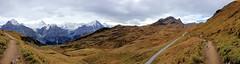 141008154232 () Tags: switzerland first grindelwald interlaken jungfrau  2014 siwss 10 bachalpsee   firstflyer   trottibikeride