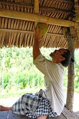 A23_Bali_F1639 (Dutch Design Photography) Tags: trip travel bali yoga indonesia island photography hotel photo asia peace fotografie resort ritual mindfulness meditation spirituality spiritual fotocursus fotoreis sekumpul sudaji omunity lemikuh