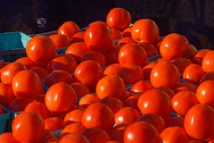 Tomatoes, 2016-10-22 (JS_Photos) Tags: vegetables fruits markets food